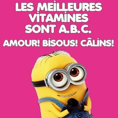 shigeru onda n'a jamais existé c'est un fake Minion Jokes, Minions Quotes, Jokes Quotes, Funny Quotes, Funny Minion, How To Speak French, Learn French, French Quotes, Derp