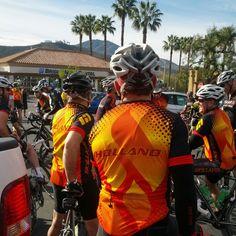 A sea of Hollands - Rancho San Diego pre ride.