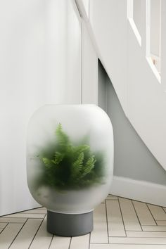 Studio Rem Encapsulates the Calm of a Foggy Day is part of Studio Rem Encapsulates The Calm Of A Foggy Day Design Milk - Nebl is an evocative planter design by Michael Rem for Gejst with frosted glass that recreates the peaceful calm of a foggy day Design Maker, Design Moderne, Frosted Glass, Modern Interior Design, Minimalist Design, Houseplants, Designer, Furniture Design, Gardens