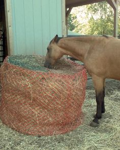 Homemade round bale hay saver with plastic snow fence and hay nets sewn to the top. Helps with digestion. Horse Hay, My Horse, Horse Stables, Horse Farms, Horses And Dogs, Types Of Horses, Horse Slow Feeder, Round Bale Feeder, Horse Care Tips