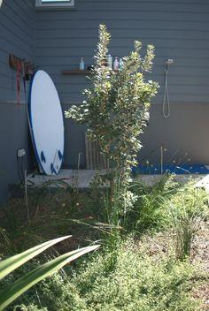 Image result for modern australian native gardens Australian