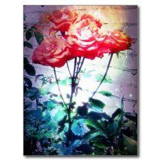Flame Roses Postcard