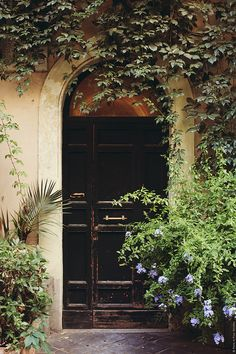 Beautiful arched door entry