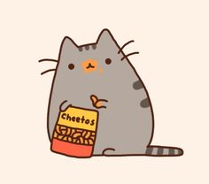 I love this fat little cat
