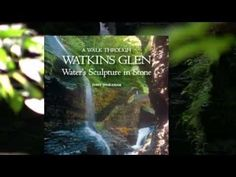Watkins Glen State Park in 90 Seconds! This gem of a park in New York's Finger Lakes region is beautifully summarized in this short video. 19 waterfalls pour through a sculptured gorge near the south end of Seneca Lake. Info on hiking, camping, swimming, picnicking, and other activities in this scenic wonder. See more about this park at ithacafingerlakes.com.