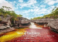 """Caño Cristales (English: Crystal Spout) is a Colombian river located in the Serrania de la Macarena province of Meta. It's a tributary of the Guayabero River. The river is commonly called the """"River of Five Colors"""" or the """"Liquid Rainbow"""" and is even referred to as the most beautiful river in the world due to its striking colors. The bed of river in the end of July through November is variously colored yellow green blue black and especially red the last caused by the Macarenia clavigera…"""