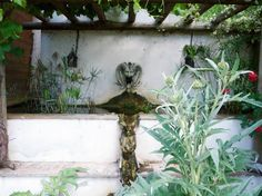 Another natural spring keeps this fountain flowing. The sound adds to your sense of serenity as you sit on the front porch and enjoy the view.