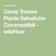 Come Trovare Piante Selvatiche Commestibili - wikiHow