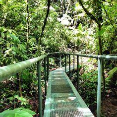 best hiking trails in Costa Rica