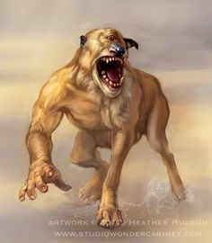 Koerakoonlased- European myth: a cyclopic creature that is half human, half dog. They live in wetlands and occasionally attack and eat people. I guess they are semicannibalistic. Is that a thing?