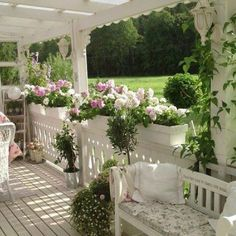 I'm toying with the idea of flower boxes on  top of the rails...maybe with a Gardenia hedge... amazing scent in the evening to add to the Stephanotis and Star Jasmine.