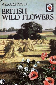Ladybird Vintage Wild Flowers Book