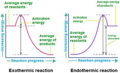 Exothermic and Endothermic Reaction Charts Chemistry Help, Chemistry Classroom, High School Chemistry, Physical Chemistry, Chemistry Lessons, Teaching Chemistry, Biology Lessons, Science Chemistry, Science Facts