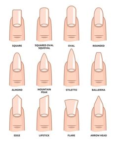 Illustration of Different nail shapes Fingernails fashion Trends vector art clipart and stock vectors. Image The post Illustration of Different nail shapes Fingernails fashion Trends vector art c appeared first on nageldesign. Aycrlic Nails, Cute Nails, Pretty Nails, Stiletto Nails, Manicures, Summer Acrylic Nails, Best Acrylic Nails, Spring Nails, Squoval Acrylic Nails