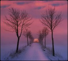 ROAD TO THE MOON!  BEAUTIFUL!