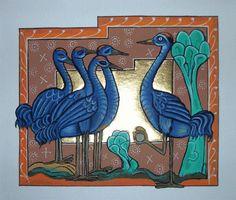 Cranes illumination Gillian Hazeldene