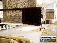 Carpet Cleaning Service Plantation