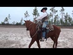 001 FB | 4 Ways To Bombproof Your Horse | Carson James Horses