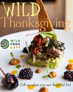 Hey Wild Ones! At Wild Food Cafe we love celebrating all the things we appreciate in our lives. ❤️❤️❤️ Now we ask YOU to join the fun and tell us what you are thankful for! Vegan Food, Vegan Recipes, Wild Ones, Glutenfree, Dairy Free, Join, Thanksgiving, Vegetarian, Thankful