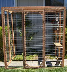 Dying to buy a house just to build our cats an outdoor enclosure.