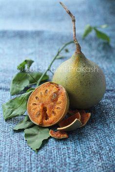 Bael Fruit de la India. Árbol espinoso de mediano tamaño, perteneciente a la familia de las rutáceas. Hojas deciduas, por lo general trifolioladas, fruto en baya de redondeado a ovalado, del tamaño de una naranja, pero con la corteza dura como la güira. En su interior contiene una pulpa dulce, olorosa, que se consume al natural, en jaleas o jugos, o a manera de membrillo. Usada en la medicina tradicional de esta parte de Asia fruit