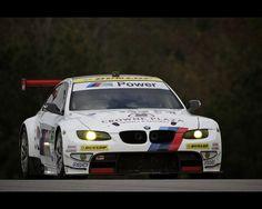 ALMS: The 15th Petit Le Mans (2012)