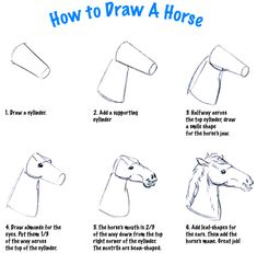 How to draw a horse head.