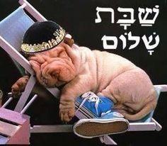 Shabbat shalon