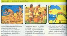 Paleolítico y Neolítico - Curso de Historia Primer Año