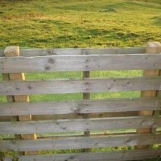 Pallets slid over fence post.  Cheap, sturdy and dog proof!