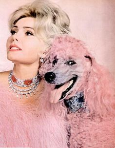 zsa zsa and poodle. It's the poodle I admire. Standard poodles stay cool no matter what you put them through! Zsa Zsa Gabor, Tout Rose, Pink Poodle, Photocollage, Look Vintage, Vintage Beauty, Vintage Pink, Vintage Fashion, Fuchsia
