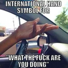 "Use this mysterious ""turn signal"" and someday we may live in a world without these hand symbols. SOMEDAY: 