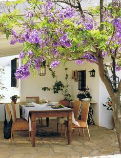 I want a patio in my home one day with a tree like this one over a pergola.but want cobblestone floor and terra-cotta rooftop.morning coffee under a tree like that every day.oh my ❥-Mari Marxuach Parrilla Outdoor Living Areas, Outdoor Rooms, Outdoor Dining, Outdoor Gardens, Indoor Outdoor, Living Spaces, Outdoor Decor, Rustic Outdoor, Outdoor Ideas