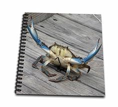3dRose db_63150_1 Blue Crab-Marine, Creature, Animal, Animals, Wildlife, Ocean, Invertebrate, Crab, Seafood-Drawing Book, 8 by 8-Inch 3dRose http://www.amazon.com/dp/B00BA372E8/ref=cm_sw_r_pi_dp_lV.0wb0VRQX5D