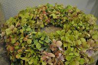 couronne hortensia