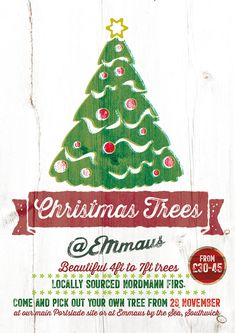 Welcome to Emmaus Brighton & Hove Brighton And Hove, Greenhouse Gardening, Garden Shop, Christmas Tree, Christmas Ornaments, Garden Inspiration, Holiday Decor, Events, Beautiful