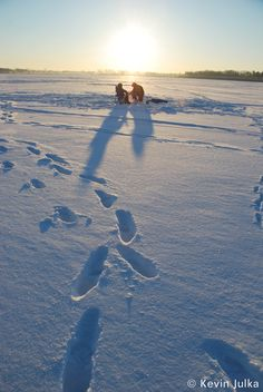 Holiday Magic On Lake Wingra Pickup >> 30 Best Places Madison Images In 2013 Madison Wisconsin City