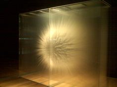 Artist: David Spriggs  Title: Vision  Medium: Acrylic on multiple sheets of transparent film housed within a display case  Venue: GRAM