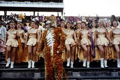 - The golden girls! The Louisiana State University tiger mascot and cheerleaders dance following their team's victory over Rice University in Tiger Stadium, Baton Rouge, Louisiana; September 19, 1959.