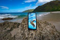 Soaring Honu iPhone 6/6s Case