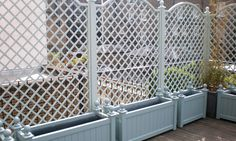 & trellis might work better than a standard garden fence. for my front driveplanters & trellis might work better than a standard garden fence. for my front drive Small Garden Fence, Garden Shrubs, Backyard Fences, Garden Trellis, Garden Beds, Trellis Fence, Garden Benches, Garden Fencing, Garden Path