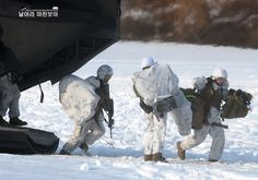 Korea, the United States Marine Corps joint training Usmc, Marines, The Rok, Chief Of Naval Operations, Trust And Loyalty, Other Countries, The Republic, Marine Corps, Armed Forces