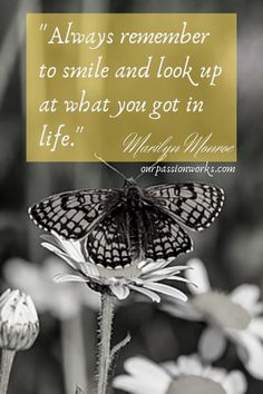 READ NOW! 83 Remarkable Marilyn Monroe Quotes That Will Empower You with Life Quotes, Relationship Quotes, Love Quotes, Friendship Quotes, Success Quotes, & Feminism Quotes | Marilyn Monroe Life | Norma Jeane #MarilynMonroeQuotes #BestQuotes #RelationshipQuotes #WomenQuotes #InspirationalQuotes #QuotesbyMarilynMonroe #QuoteRoundup #Butterflies #Flower