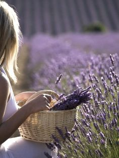 ♔ Lavender Love