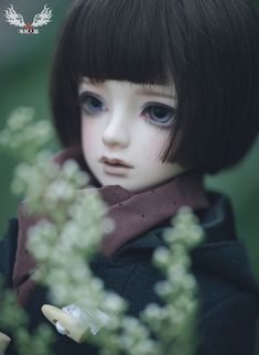 Rosemary|DOLKSTATION - Ball Jointed Dolls Shop - Shop of BJD Dolls