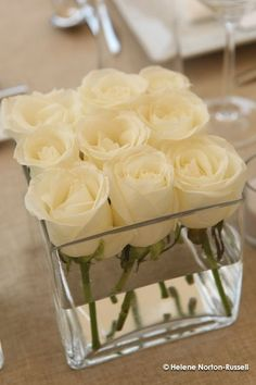 The perfect wedding centerpiece -- Dollar Store square vases with 9 white roses each. Lauren, this will be gorgeous on those dark wine tablecloths you picked out. #Centerpieces