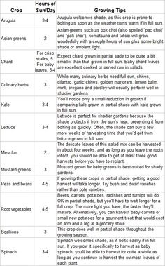 what grows well in shade (trying to plan my garden)