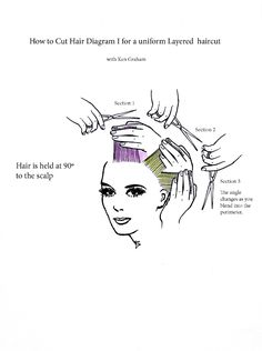 My advise to my fellow pinners as a cosmetologist, don't try this at home. Theres A LOT more to layers than this diagram shows AND and these types of layers doesn't look good on everyone's hair length or texture.
