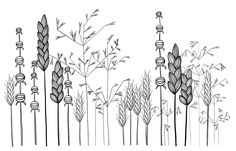 My original art inspired by many. Doodle flower line drawing tattoo garden plants grass Line Drawing Tattoos, Flower Line Drawings, Botanical Line Drawing, Simple Line Drawings, Flower Garden Drawing, Grass Drawing, Garden Line, Garden Art, Wildflower Drawing