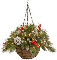 National Tree 20 Inch Frosted Berry Hanging Basket with Red Berries, Cones and 50 Battery Operate. National Tree 20 Inch Frosted Berry Hanging Basket with Red Berries, Cones and 50 Battery Operate. Christmas Hanging Baskets, Outdoor Christmas Decorations, Lawn Decorations, Graduation Decorations, Christmas Time, Christmas Wreaths, Christmas Crafts, Christmas Ornaments, Country Christmas